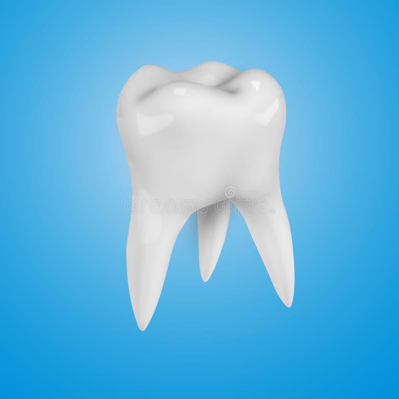 Biały realistyczny 3d ząb na błękitnym tle ilustracja wektor