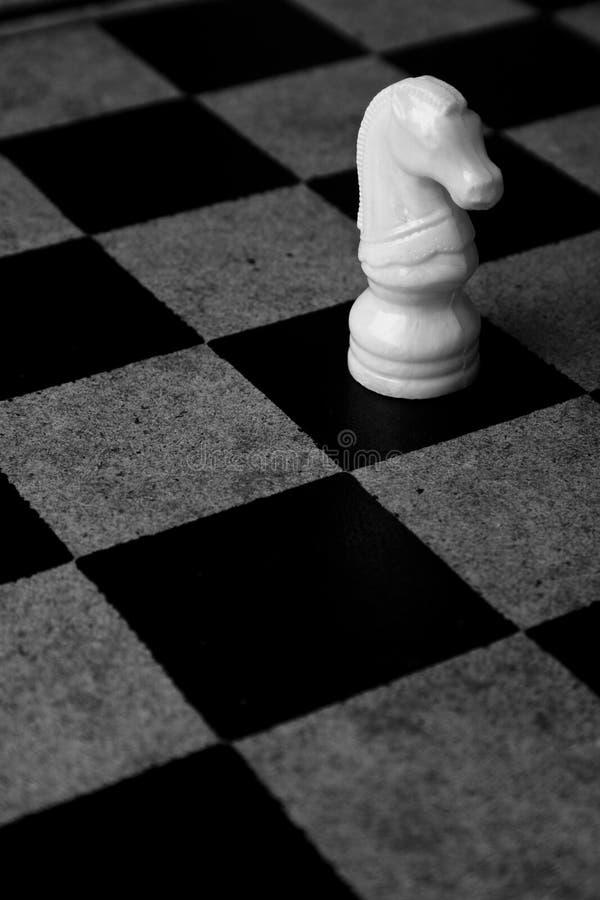 Biały rycerz Samotnie zdjęcie royalty free