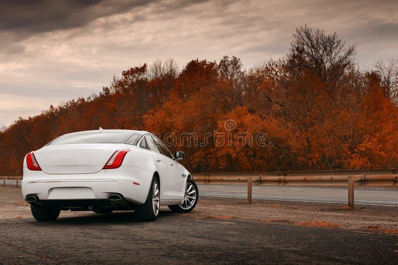 Biały samochodu pobyt na mokrej asfaltowej drodze obraz stock