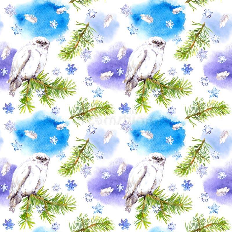 Biały sowa śnieg i ptak Wielostrzałowy zima wzór, Watercolour ilustracji
