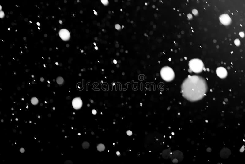 Biały spada śnieg przeciw czarnemu niebu obraz royalty free