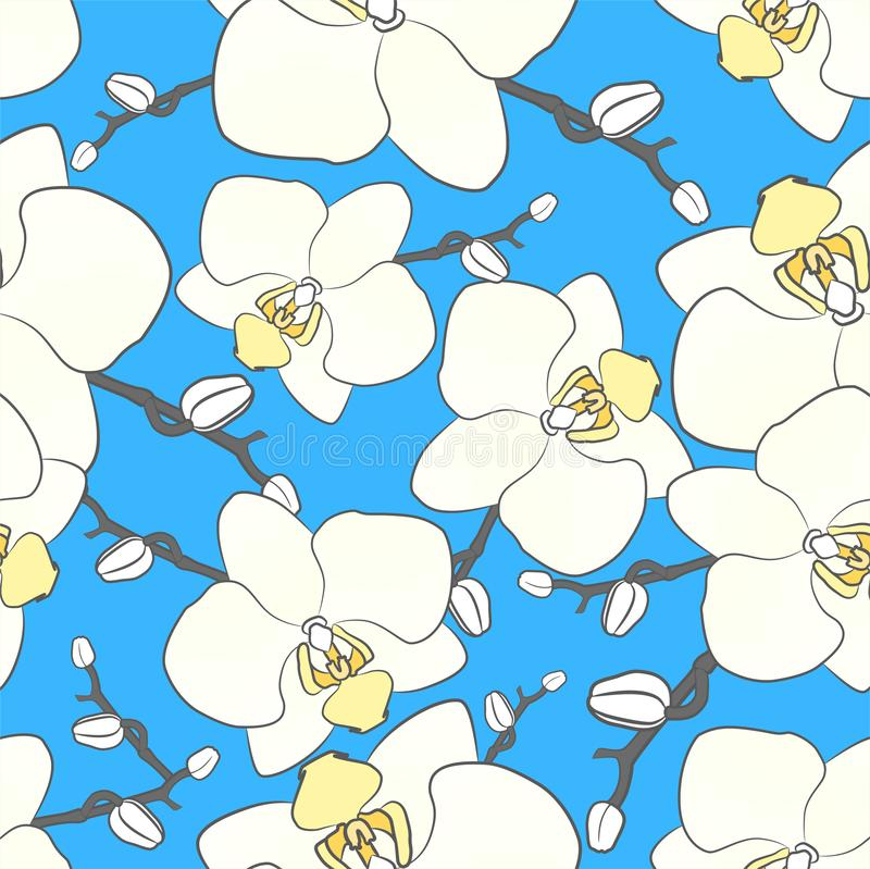 Biały storczykowy wektoru wzór t?a kwiat?w wektor ilustracji