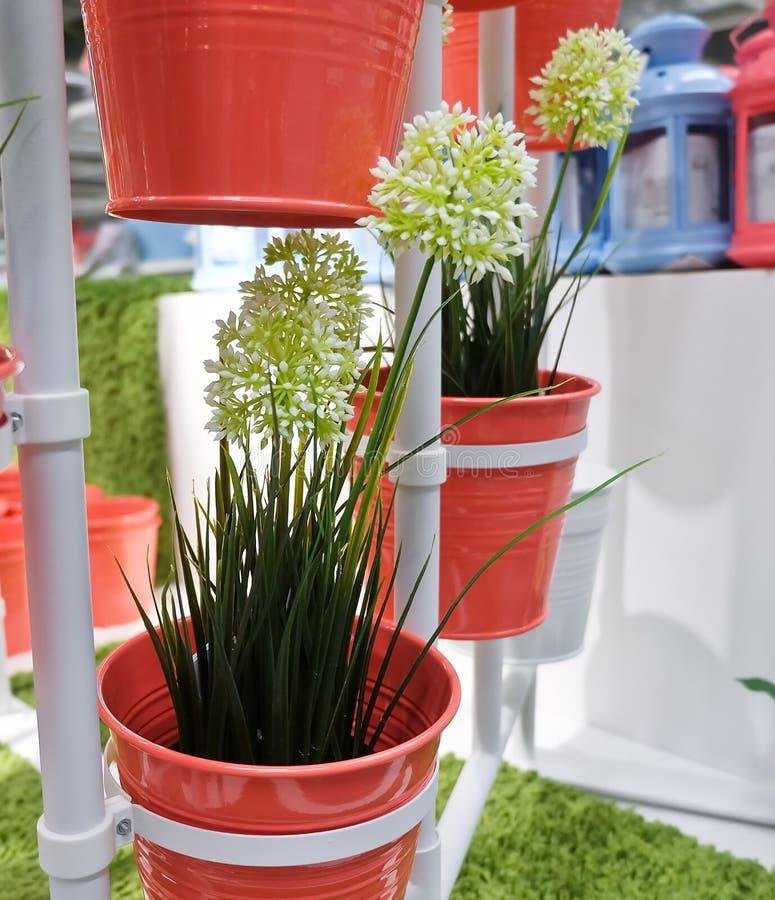 Biały Sztuczny Allium Giganteum w metali garnkach zdjęcia stock
