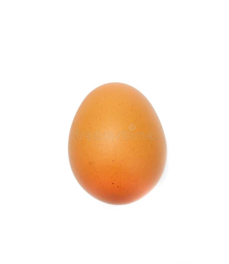 Biały tła jajko fotografia stock
