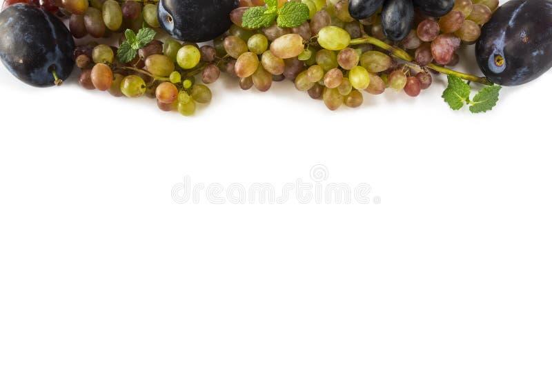 biały tło winogrona Dojrzały winogrono, śliwki i nowi liście przy granicą wizerunek z kopii przestrzenią dla teksta, Odgórny wido obraz royalty free