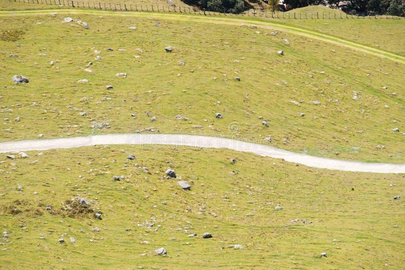 Biały wijący odprowadzenie ślad dzieli pochylania pole w dwa częściach obrazy royalty free