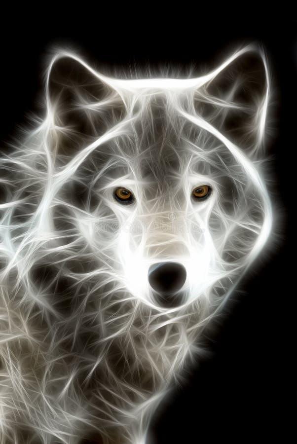 biały wilk ilustracja wektor