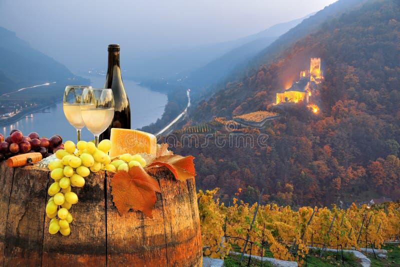 Biały wino z baryłką na winnicy w Wachau, Spitz, Austria zdjęcia royalty free
