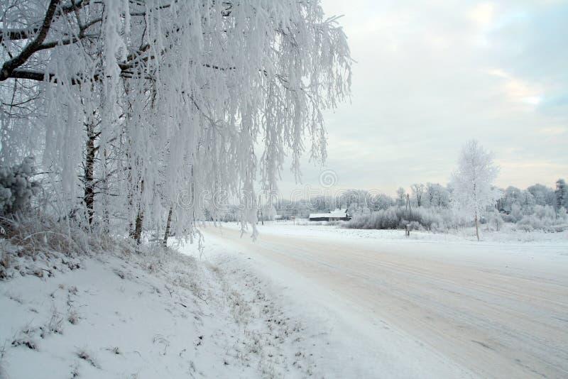 biały zimowy obrazy stock
