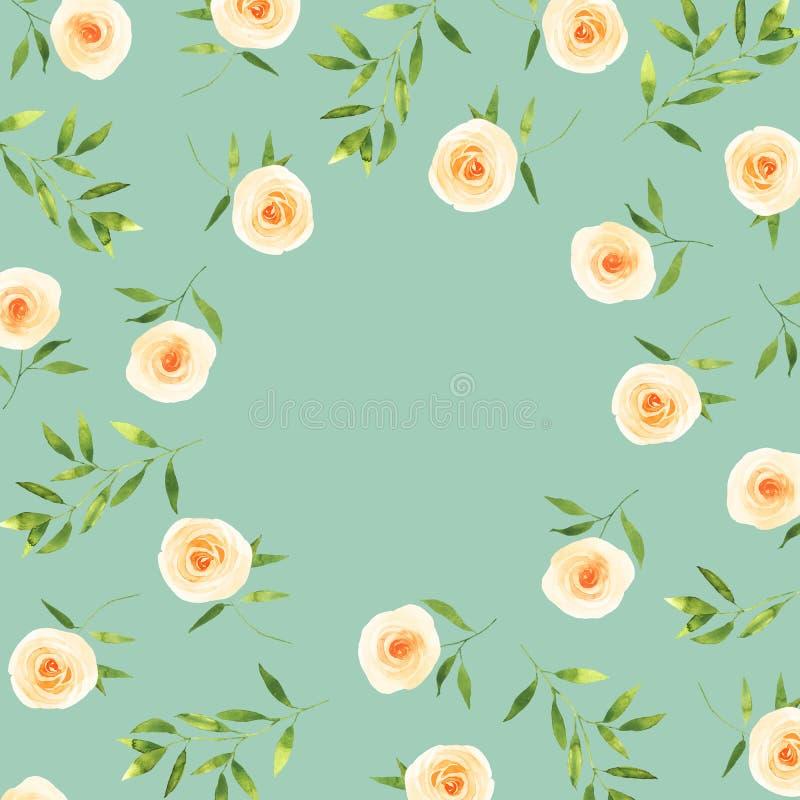 Białych róż tła akwareli szablon na jasnozielonym ilustracji