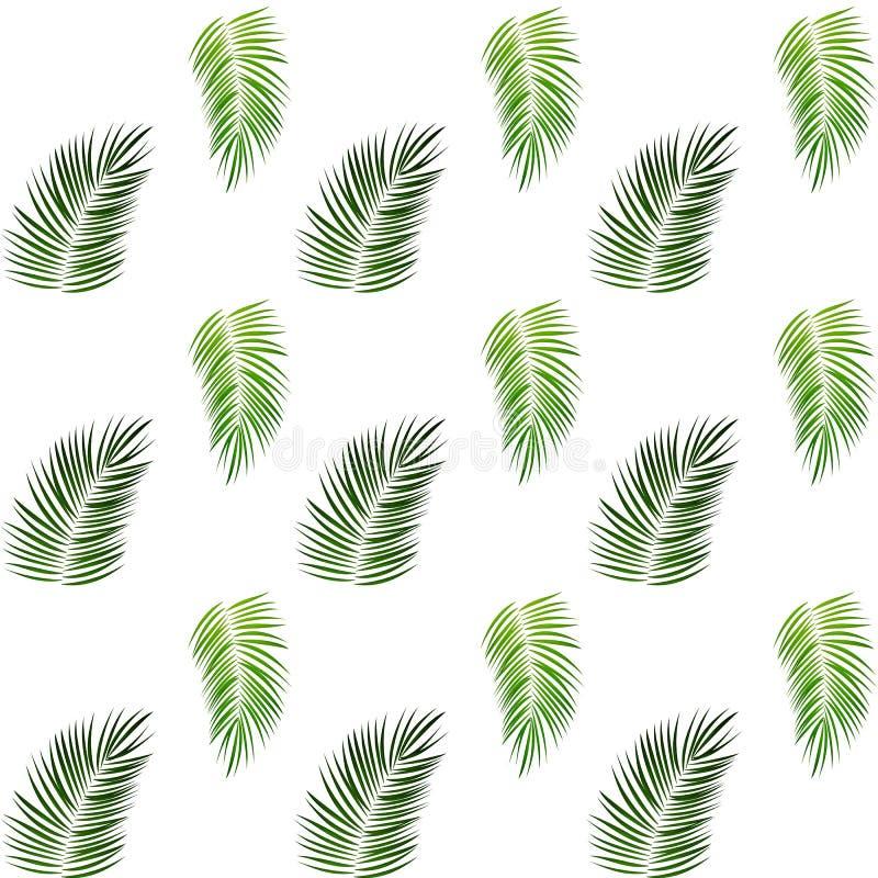 bia?y t?o drzewka palmowe bezszwowy wzoru r?wnie? zwr?ci? corel ilustracji wektora ilustracja wektor