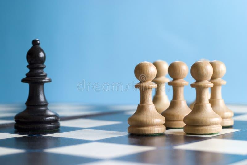 biada szachy zdjęcia stock