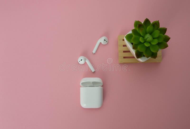 Biali bezprzewodowi hełmofony na górze each inny z ładowarką dla one Zielony salowy kwiat obok bezprzewodowych hełmofonów na menc fotografia royalty free