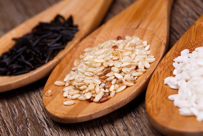 Biali, dzicy i brown ryż, zdjęcie stock