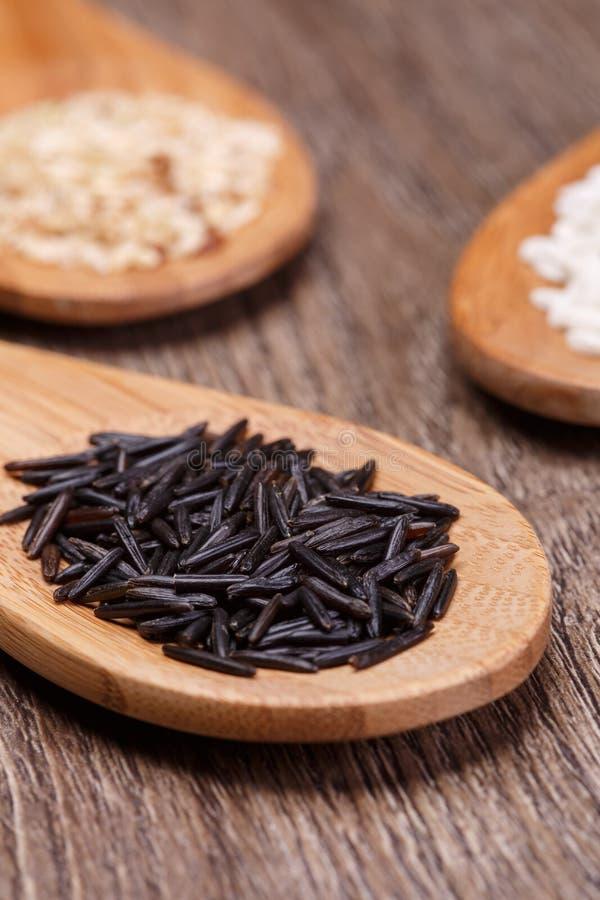 Biali, dzicy i brown ryż, fotografia royalty free