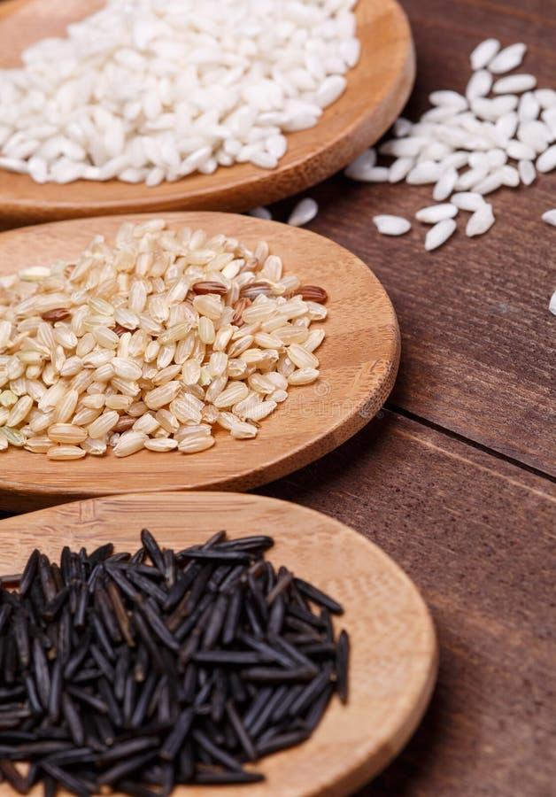 Biali, dzicy i brown ryż, zdjęcie royalty free
