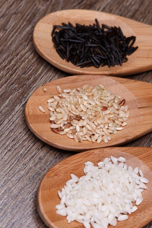 Biali, dzicy i brown ryż, fotografia stock