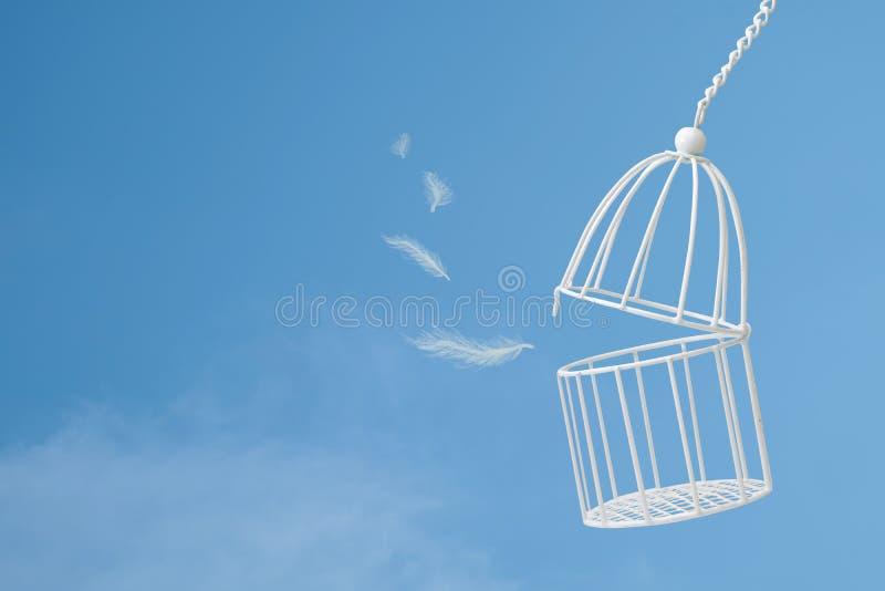Biali piórka unosi się na zewnątrz ptasiej klatki na niebieskim niebie z clou zdjęcia royalty free