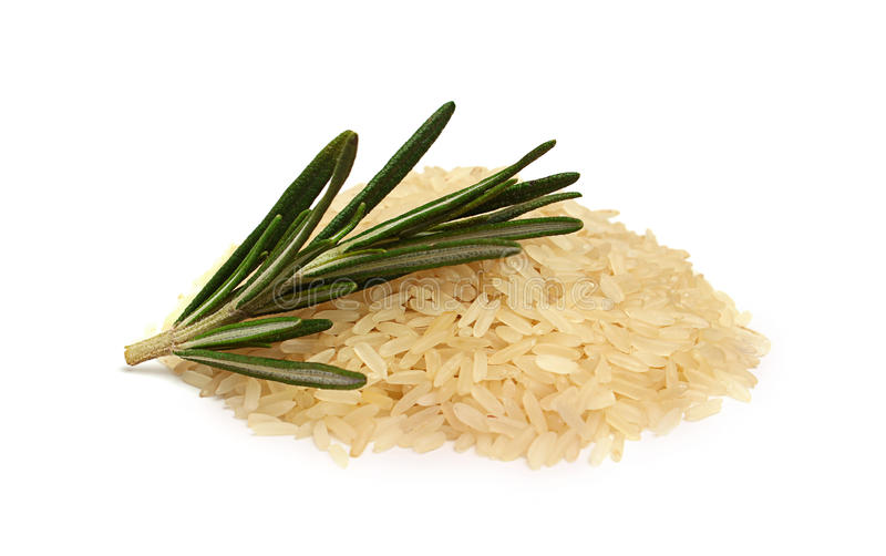 Biali ryż z sprig rozmaryny obrazy stock