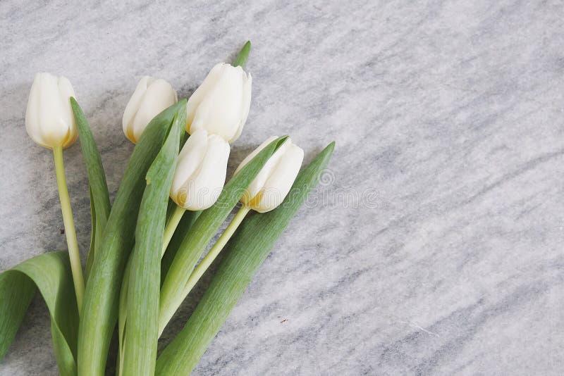 Biali tulipany na marmurze fotografia stock