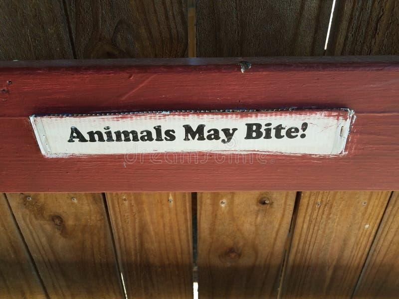 Biali zwierzęta mogą gryźć znaka na czerwieni i brązu ogrodzeniu fotografia royalty free