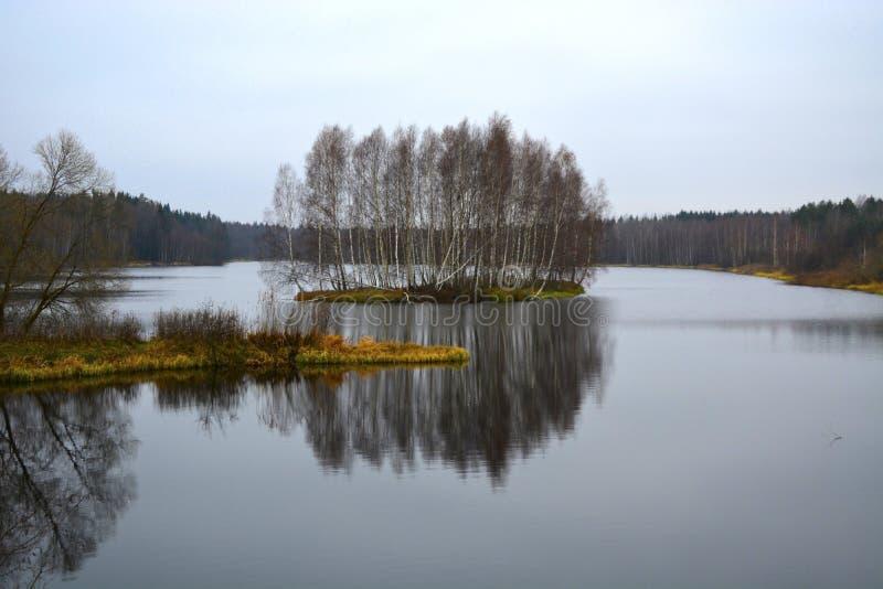 Bialowieza Forest Reserve Le village de Kamenyuki belarus photo libre de droits