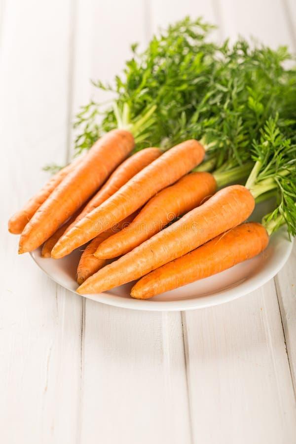Download Bianco immagine stock. Immagine di giardinaggio, arancione - 117979883
