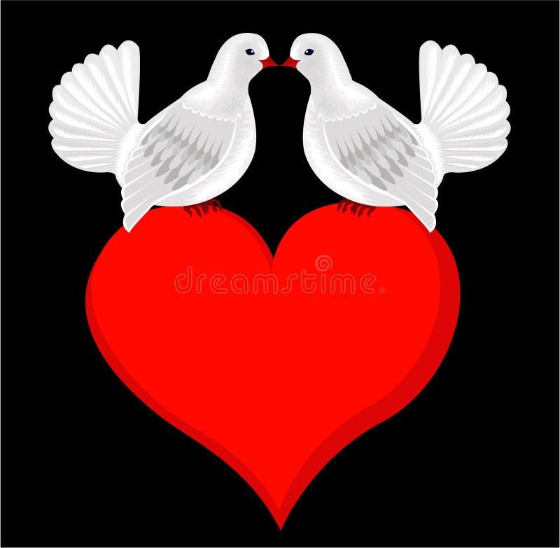 Bianco che bacia le colombe nell'amore su cuore. Partecipazione di nozze illustrazione di stock