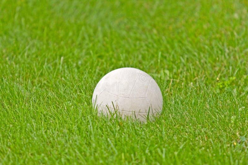 bianco di calcio di verde di erba della sfera immagine stock libera da diritti