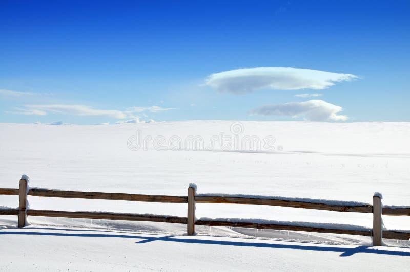 Bianco di Snowy immagine stock
