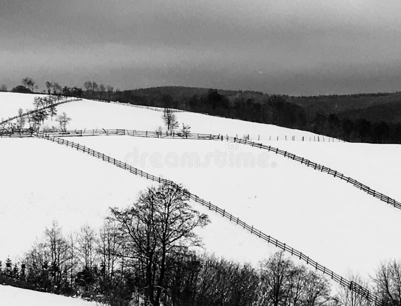 Bianco e nero del lanscape della neve fotografia stock