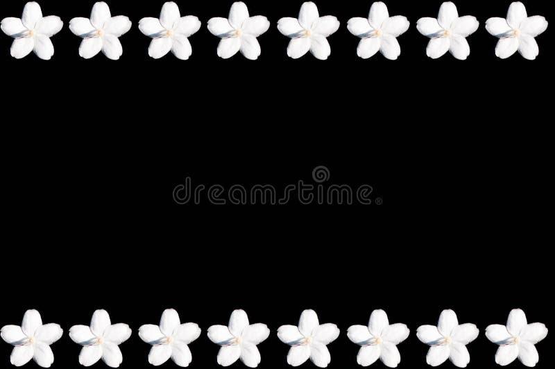 bianco nero del fiore della priorità bassa fotografie stock
