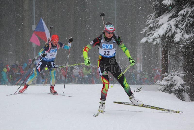 biathlon photo libre de droits
