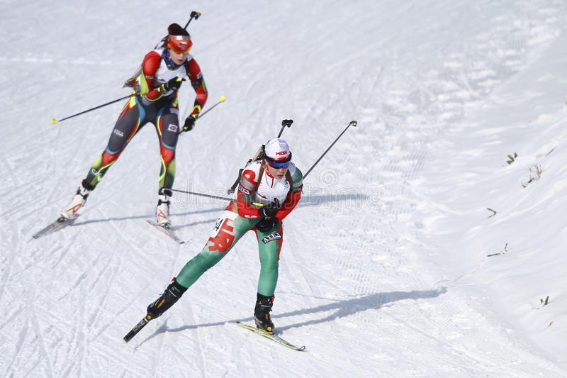 Biathlonlopp arkivbild