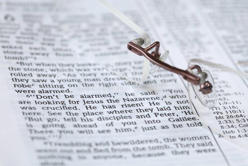 Bibbia con testo nel 16:6 del contrassegno - è aumentato fotografia stock