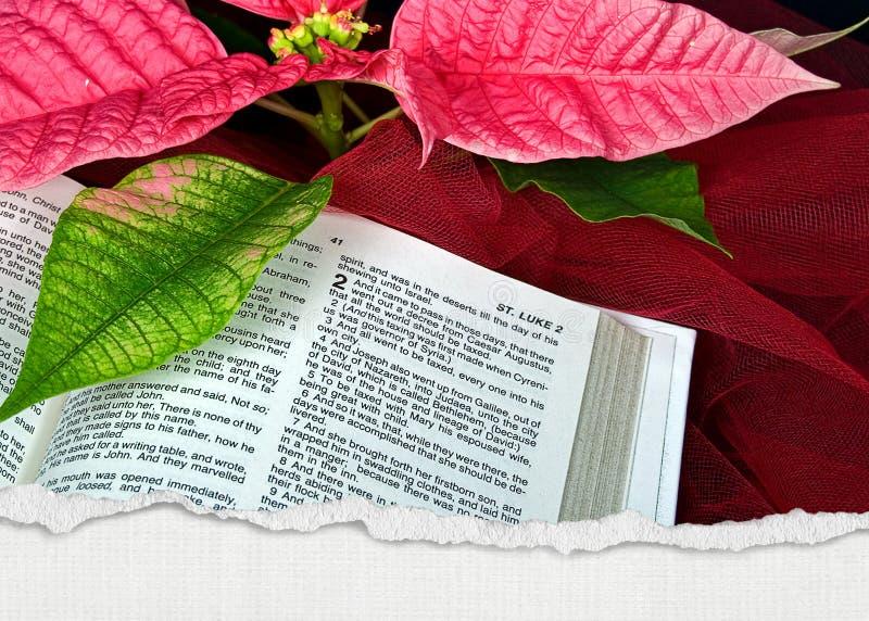 Bibbia di Natale fotografia stock libera da diritti