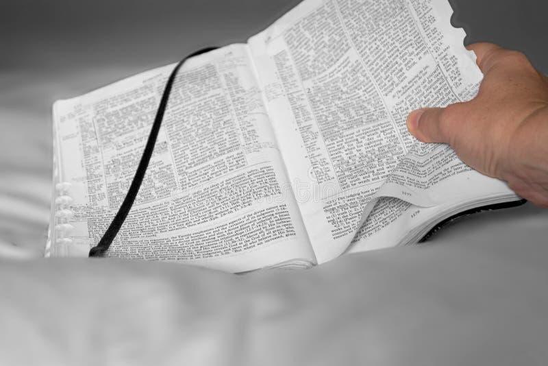 Download Bibbia e mano immagine stock. Immagine di scripture, sacred - 207515