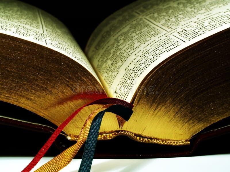bibel royaltyfri bild