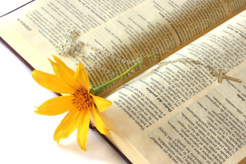 bibel arkivbild
