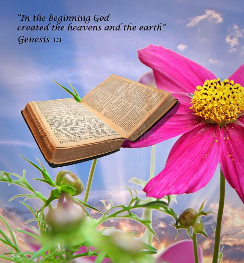 Bibelberättelse av skapelsen royaltyfri fotografi