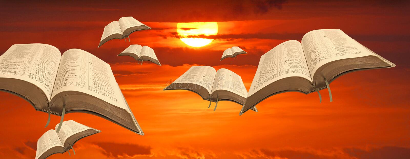 Bibelfåglar av frihet royaltyfri foto