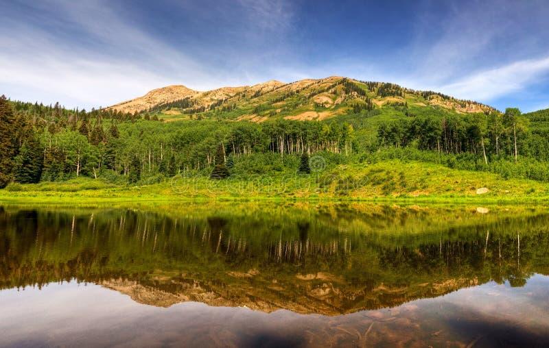 Biber-Teich-Reflexions-Panorama stockbild