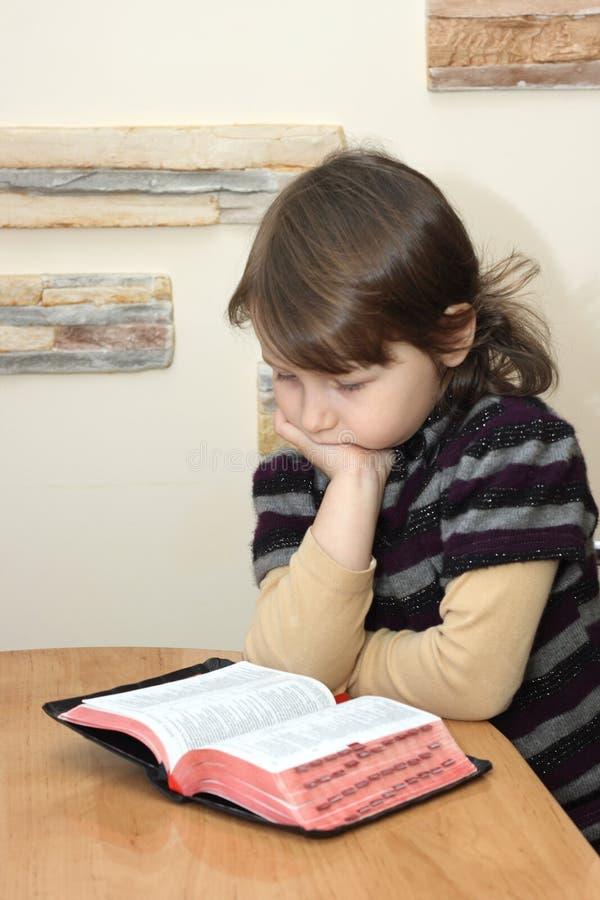 Free Bible Royalty Free Stock Photos - 21368598