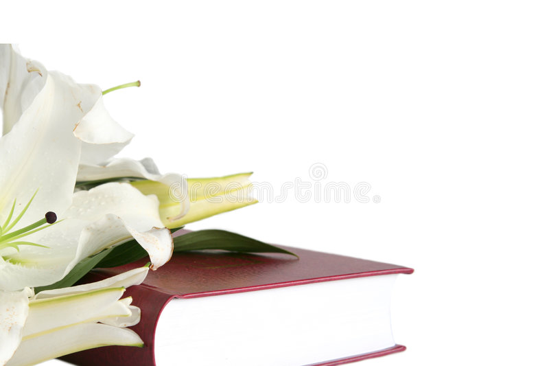 Download Bible stock image. Image of praise, faithful, lily, pray - 2198393