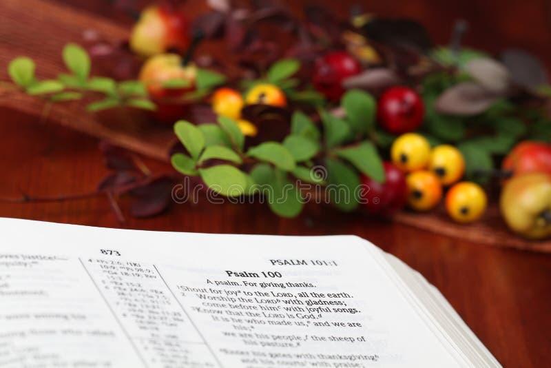 Bible d'action de grâces photographie stock libre de droits