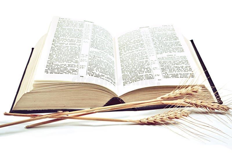 Biblia en el fondo blanco foto de archivo libre de regalías