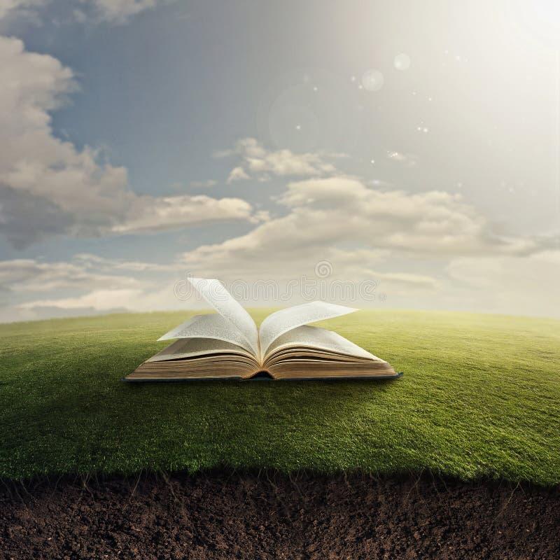 Bible on grass. stock photo