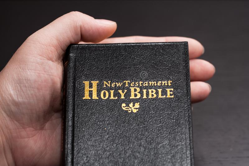 The Bible Opened. stock photo