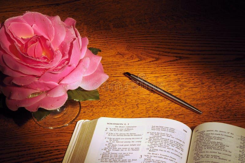 Bible, pen, & rose stock images