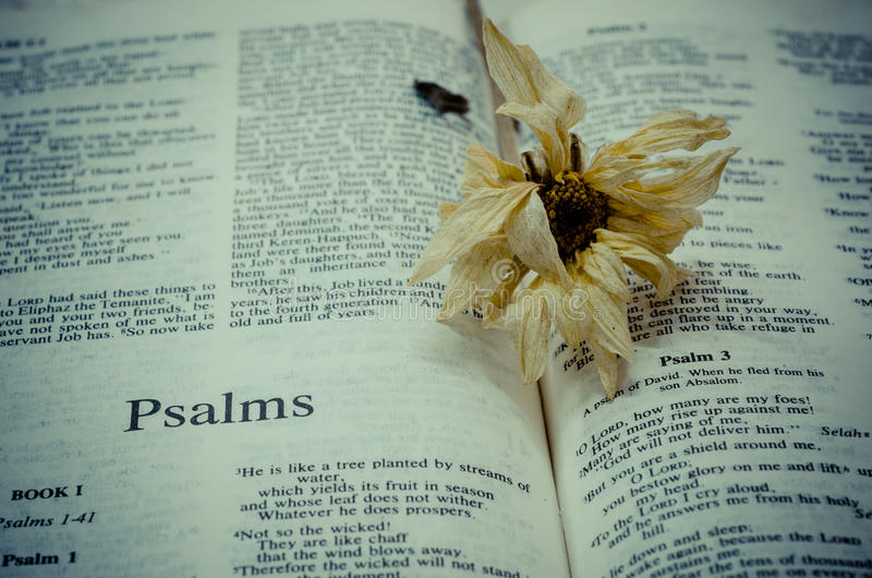 Bible : Psalms. Bible Psalms page in vintage and flower royalty free stock photos